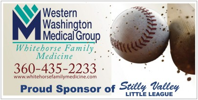 little_league_banner_web_copy
